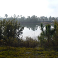 Pond at Rachel's Landing Subdivision